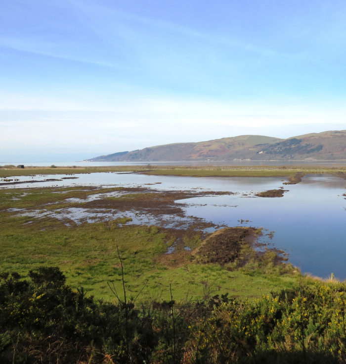 RSPB Cymru reserves stay open but visitor centres, cafes and shops to close